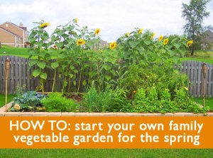 HOWTO-VegetableGardens