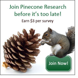 pinecone-banner